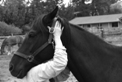 Chiropathic adjustments for horses